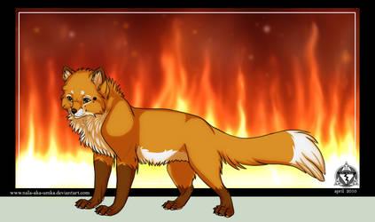 Fire: Red Fox by NaLa-aka-Umka