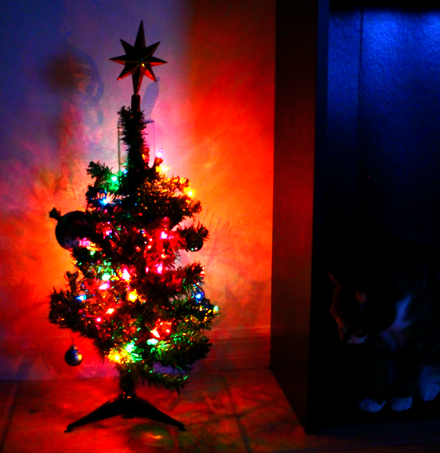 My Dinky Christmas Tree by iNightfaller