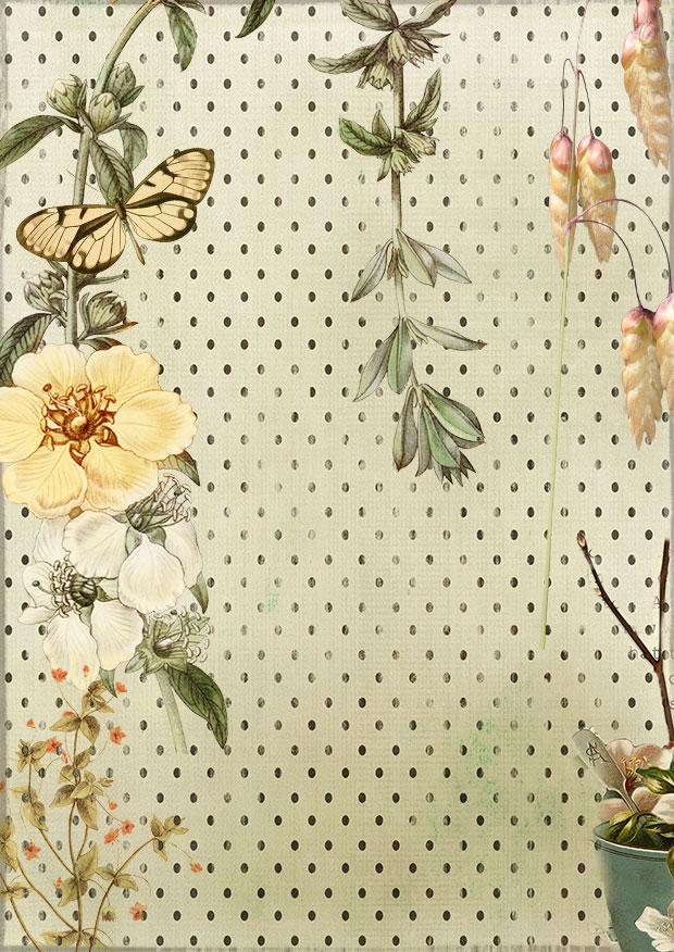Nature Inspired by DeirdreMariePowell