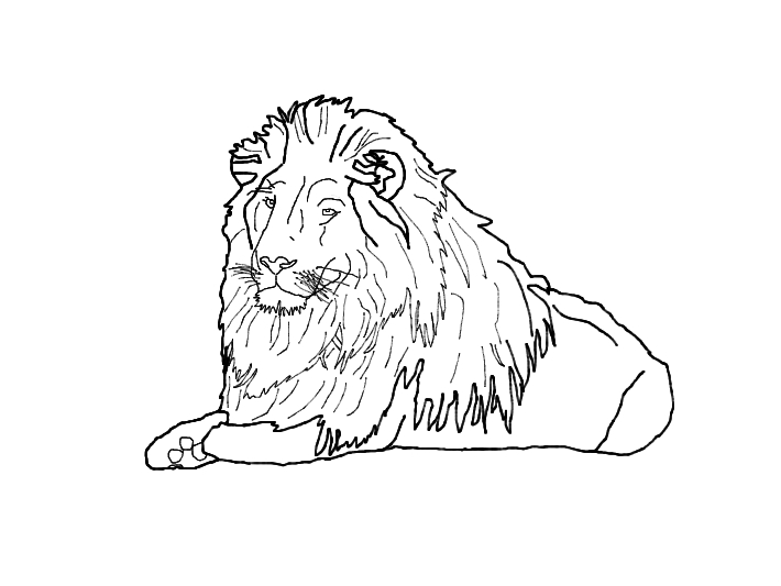 lion outline by hiidee