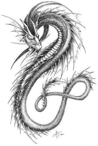 Dragon pencil sketch 2 by nitrocess