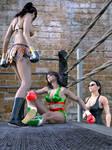 Yesenia vs Guadalupe Knockdown by bx2000b