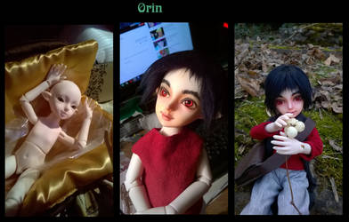Orin by Janiko-neko-chan
