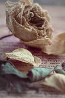 The Scent of dried roses...... by Brightsmile-didi