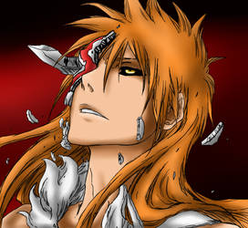 Hollow Ichigo - Arrancar