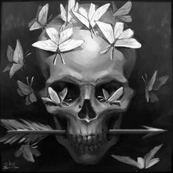 Skull and butterflies by schastlivaya-ch