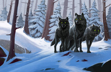 Wolves in the snowy forest