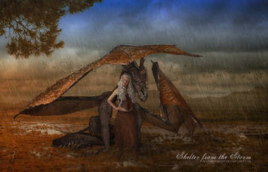 Shelter from the Storm by deathbycanon