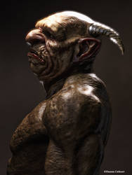 Portrait of a Troll