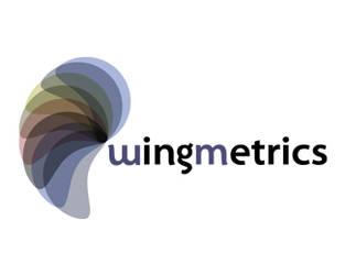 Wingmetrics Logo by littleboxofideas