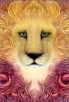 lion by pinkminx09