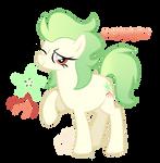 Starfruit .Pony Custom.