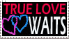 True Love Waits Stamp by christians