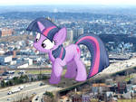 Twily wandering off