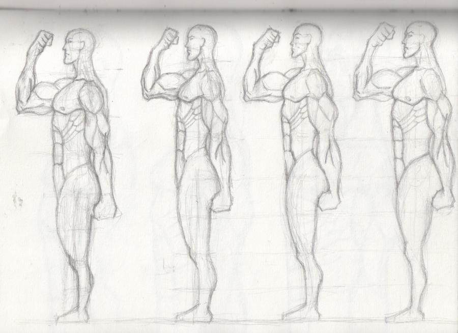 Drawing Male Anatomy Hero 5 by OLUDAYONBA on DeviantArt