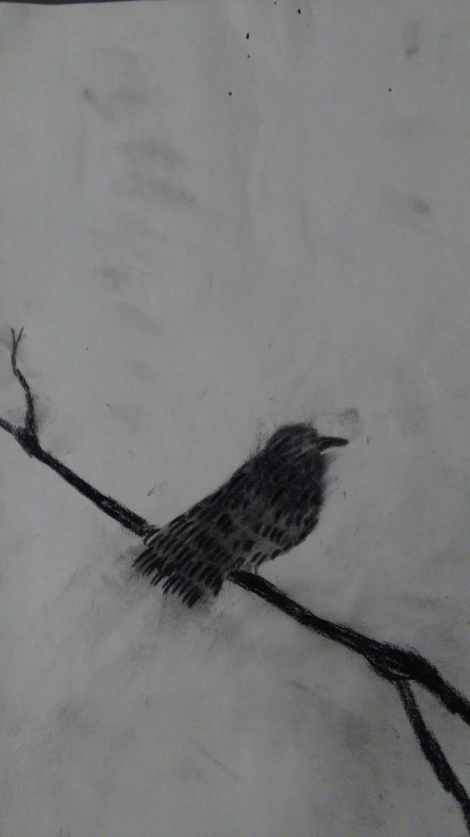 Bird by SztabaSztabinski