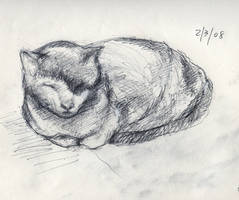 Deimos the Cat by troque