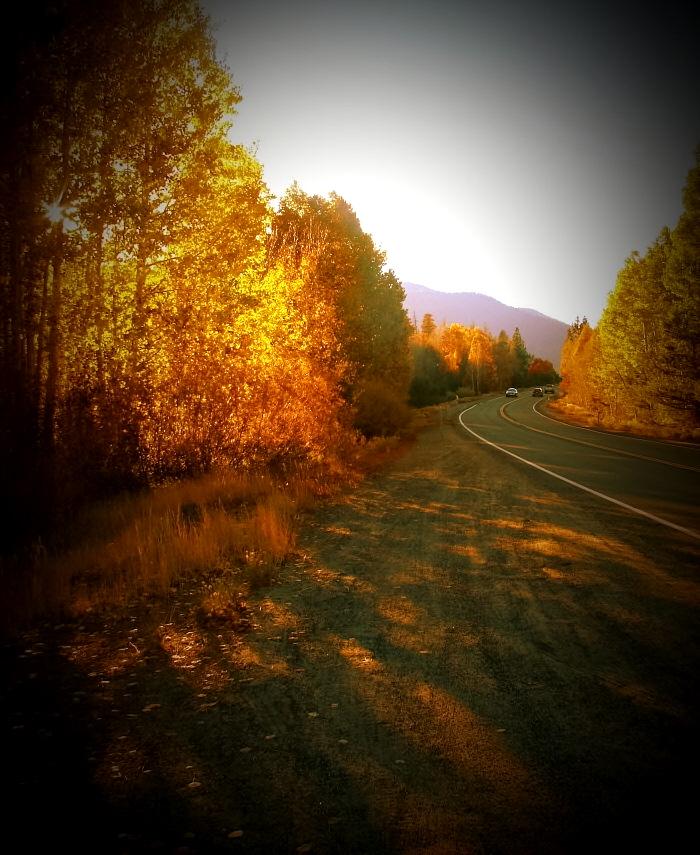 Autumn Beauty by kenanicole