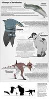 4 vertebrate types