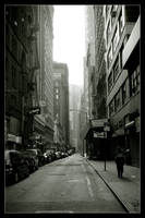 Typical NY Street by usesoap