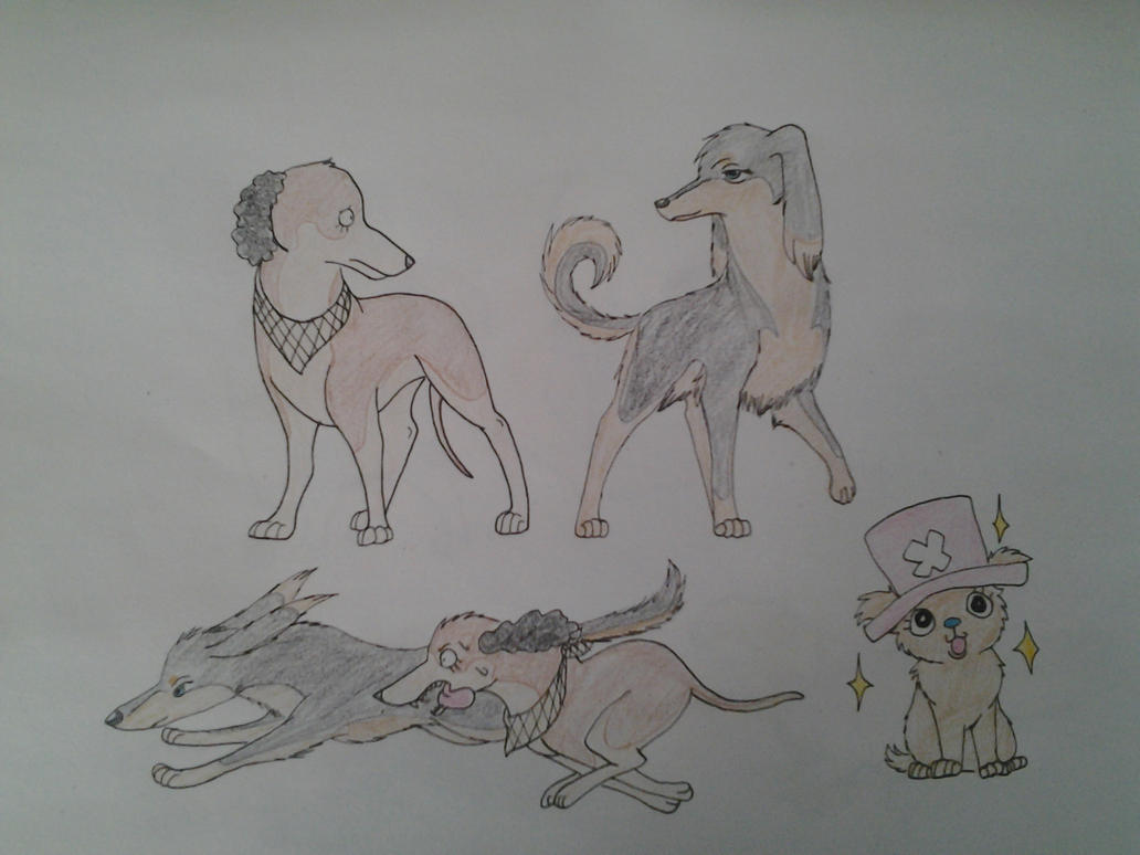 Straw Hat Dog Dump 3 by XfangheartX