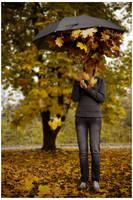 Fall... by billysphoto