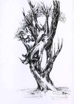 Tree-eating-tree