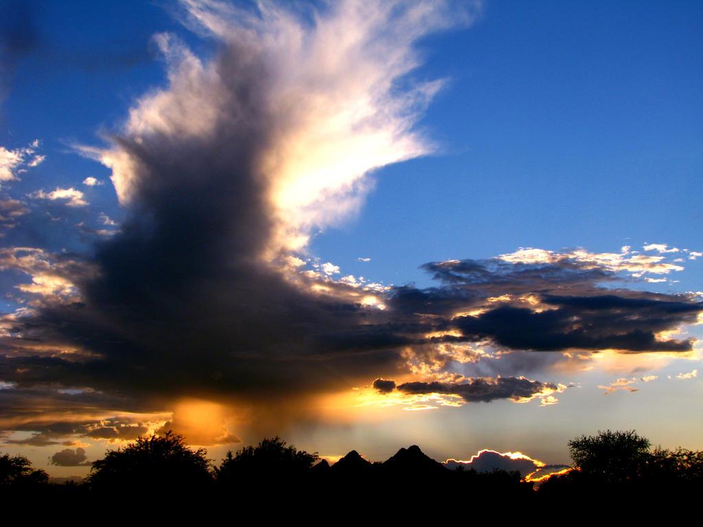 Sunset 4646 by Mammoth-Hunter