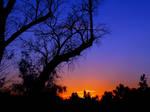 sunset A2027