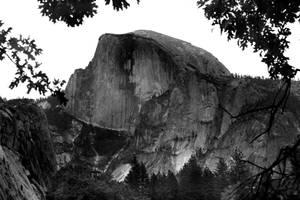 Yosemite BW 4013