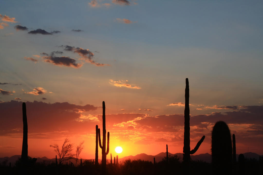Sunset 2106 by mammothhunter