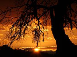 Sunset 7427 by Mammoth-Hunter