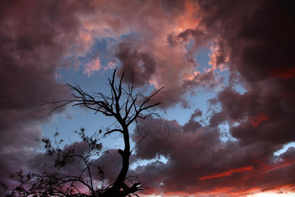 Sunset 2421 by mammothhunter