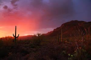Sunset  0319 by Mammoth-Hunter