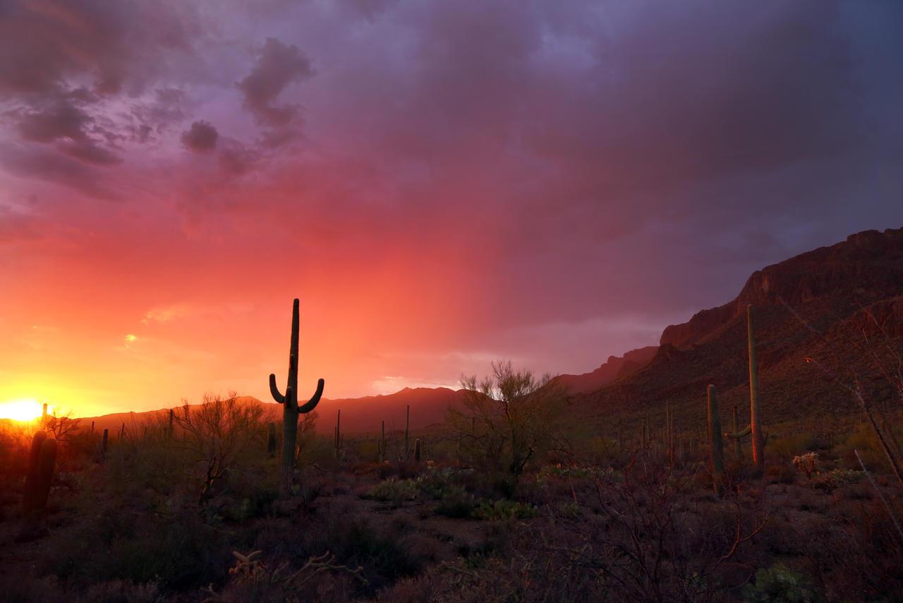 Sunset 0316 by Mammoth-Hunter