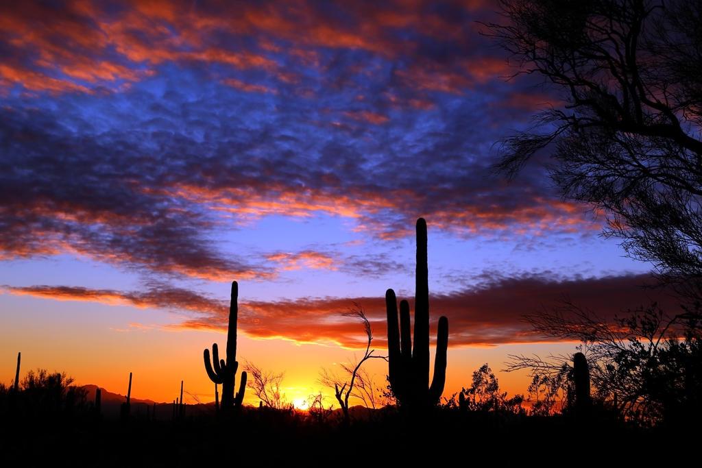 Sunset 4300 by mammothhunter