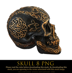 skull 8 png by yellowicous-stock