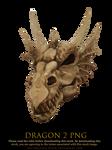 dragon 2 png