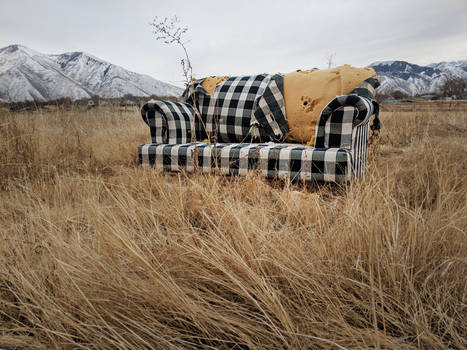 abandoned couch 8