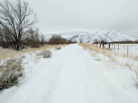 snowy countryside 5