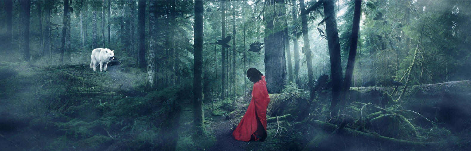 In The Woods by BENAFOG