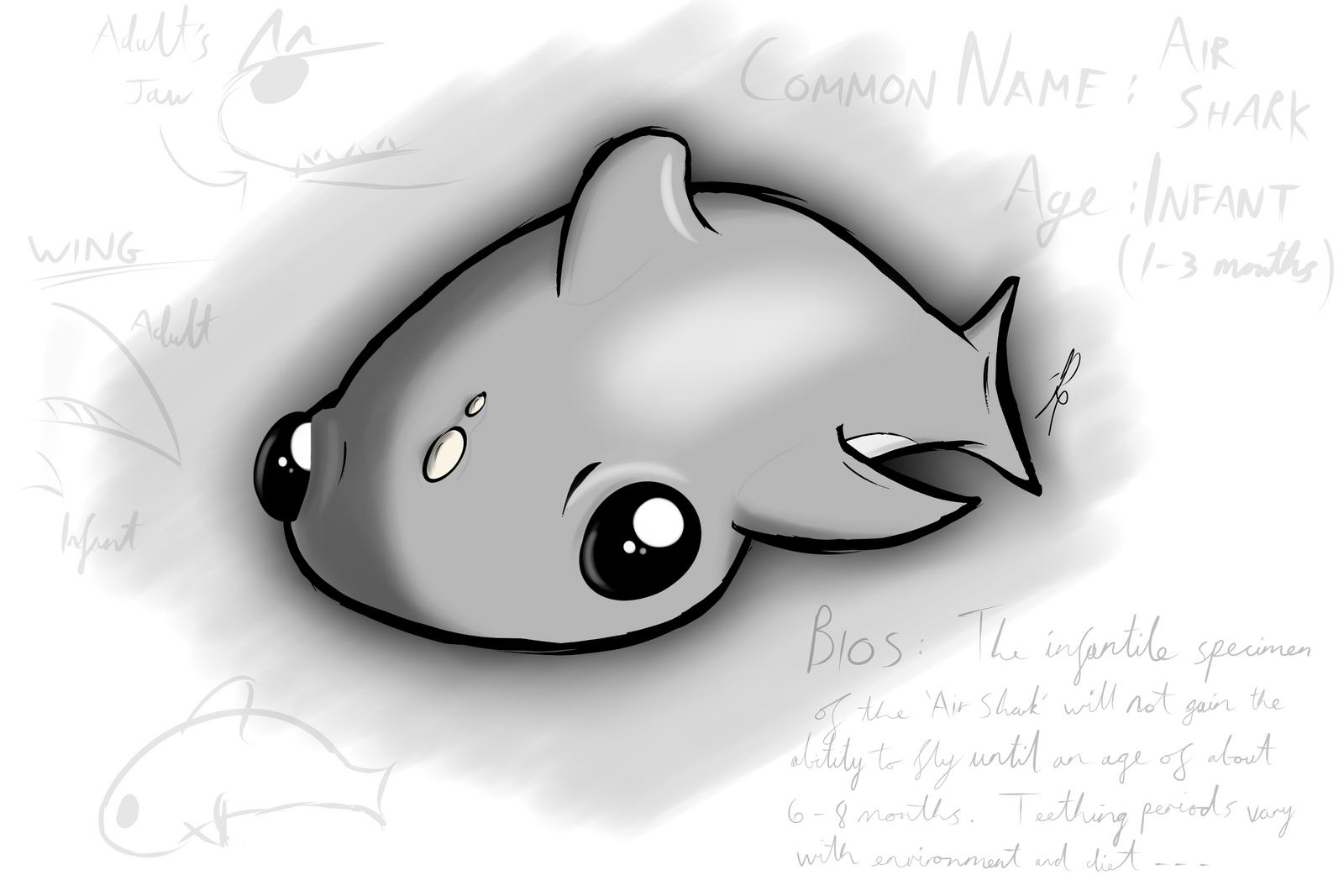 34   Beauty Cute Shark for Cute Shark Drawing  300lyp