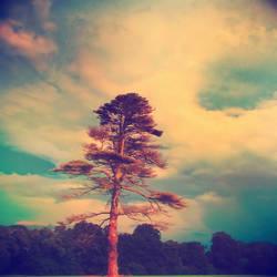 Silky Irish Sky by Onceuponatime13