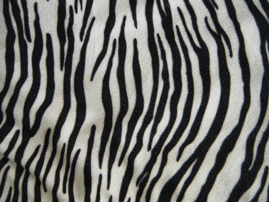 zebra texture stock by gabriellexx