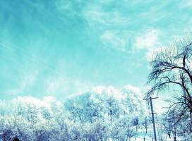 Winter by Jojonel