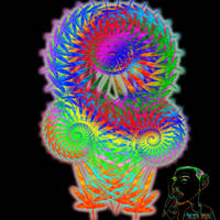 trippy hippy picture 3 by SkeIator