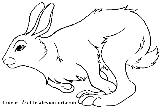 Running Rabbit Drawing Running Rabbit Lineart Free