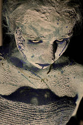 white widow2 by DarNegimesAs