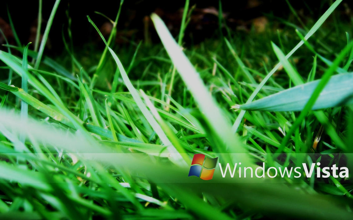 windows vista grass wallpapervalorieketlyn on deviantart