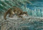 Otter's wisdom by Taski-Guru